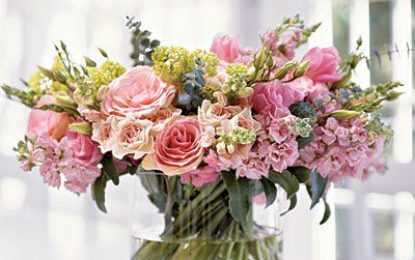 Pink flowers and their arrangements 101